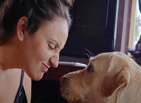 Effective Fundraising Video Flicks Australia